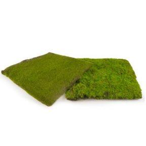 מצע דשא 30X30